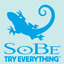 SoBe Try Everything Themes and Pics Gamerpic
